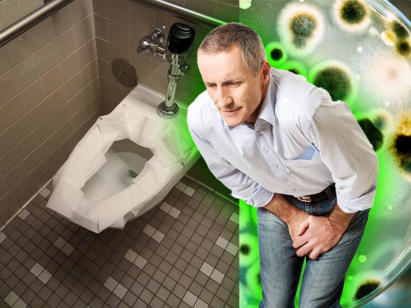 Public Service Announcement – Toilet Nesting